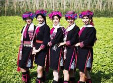 黎族妇女服饰的特色